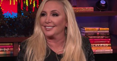Real Housewives of Orange County - Shannon Beador Ends Romance With New Boyfriend