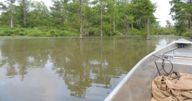 Swamp People Area - Randy Edwards