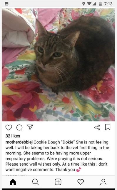 90 Day Fiance: Cookie Dough