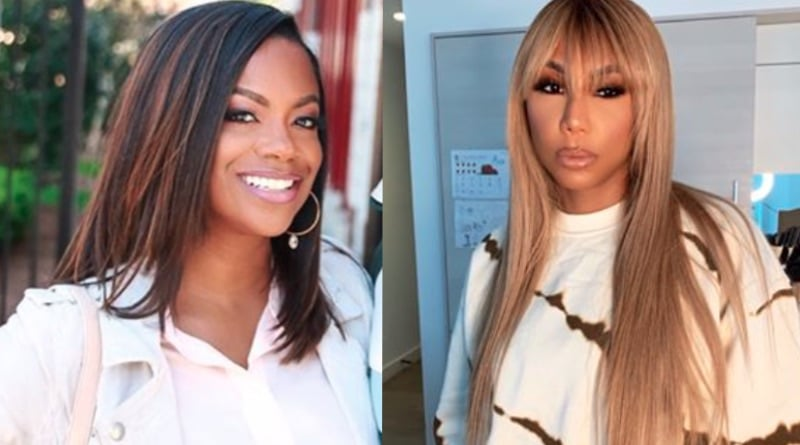 Celebrity Big Brother: Kandi Burruss - Tamar Braxton