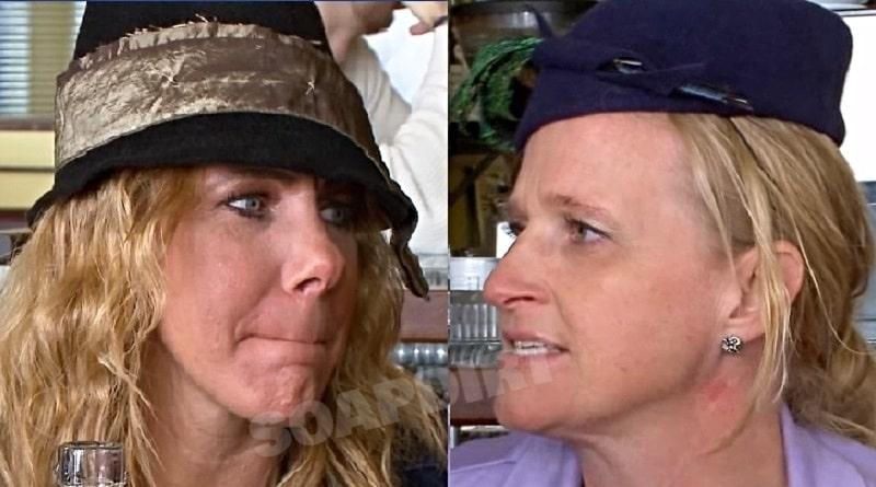 Sister Wives: Meri Brown - Christine Brown