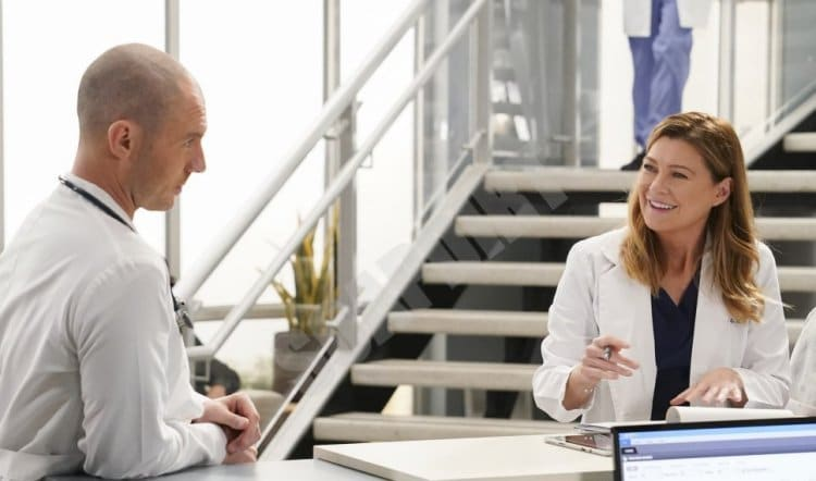 Greys Anatomy: McWidow - Cormac Hayes (Richard Flood) - Meredith Grey (Ellen Pompeo)