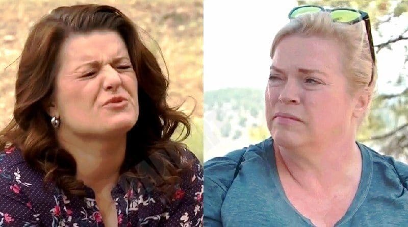 Sister Wives: Robyn Brown - Janelle Brown