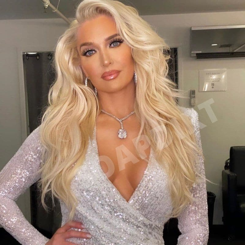 Real Housewives of Beverly Hills: Erika Jayne
