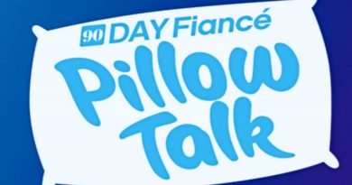 90 Day Fiance: Pillow Talk logo